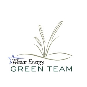 Green Team color