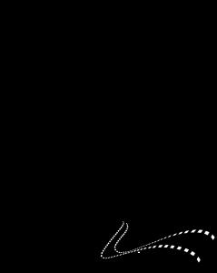 WSFF2012_Logo_white