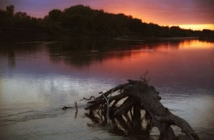 Staub on the Kaw – This photo was taken while on a fall float trip from Junction City to Manhattan. Photo was east of Ogden and shows a Cottonwood staub in the Kaw at Sunset.
