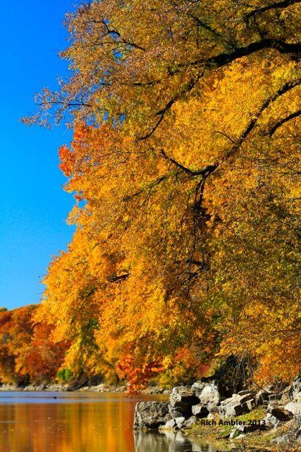 Fall Photo Rich